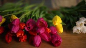 I tulipani rossi, gialli e bianchi si trovano sulla tavola stock footage
