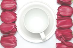 I tulipani rossi si trovano su un fondo bianco vicino alla tazza di caffè macchiato, che sta su un piattino bianco immagine stock
