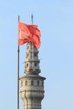 I turco diminuiscono con Beyazit Tower Fotografie Stock Libere da Diritti