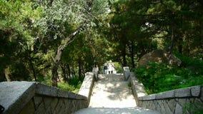 I turisti che camminano nella pietra della montagna fa un passo, portatori che camminano sul boulevard in montagne archivi video