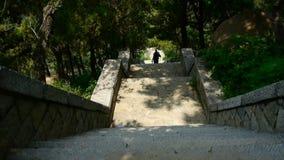 I turisti che camminano nella pietra della montagna fa un passo, scalatore che cammina sul boulevard in montagne archivi video