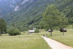 I turisti che visitano la valle di Voje alla conclusione del Mostnica si rimpinzano di non lontano dal lago Bohinj in Slovenia Fotografia Stock Libera da Diritti