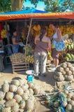 I turisti fermano e comprano la forma della frutta fresca una stalla locale del bordo della strada nelle Filippine Fotografia Stock Libera da Diritti