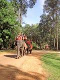 I turisti guidano l'elefante a Angkor Thom Immagini Stock
