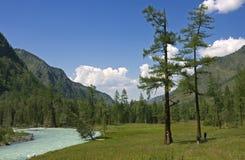 I turisti si avvicinano al fiume della montagna Fotografia Stock Libera da Diritti