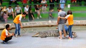 I turisti sono seduta fotografata su un coccodrillo Manifestazione del coccodrillo thailand video d archivio