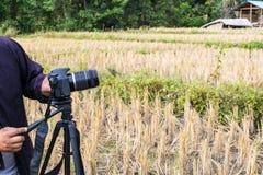 I turisti stanno prendendo le foto del campo immagine stock