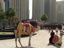 I UAE Dubai immagine stock