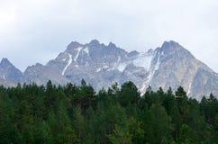 I utlöparen av Mount Elbrus Arkivfoto