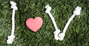 I and V letters and three paper heart cut outs on grass. I and V letters and three paper heart cut outs on grass Stock Photo