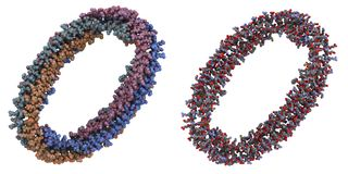 A-I van Apolipoprotein molecule Stock Fotografie