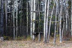 I vari pali del gioco di caccia hanno installato ad un campeggio immagine stock