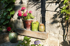I vasi di argilla con i fiori sopra mettono il bastone tra le ruote Fotografia Stock