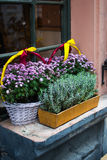 I vasi ed il canestro con l'autunno fiorisce sul davanzale all'aperto Fotografia Stock