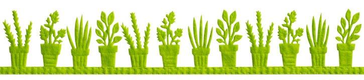 I vasi verdi con Plats isolato Immagine Stock