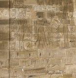 I vecchi geroglifici dell'egitto hanno intagliato sulla pietra Fotografia Stock Libera da Diritti