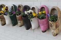 I vecchi impedimenti di legno con la fioritura fiorisce la parete di legno d'attaccatura, Marken, Paesi Bassi immagini stock