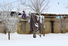 I vestiti si sono asciugati su una corda su un fondo rurale dell'inverno Fotografie Stock