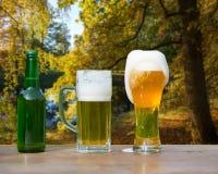 I vetri della birra e della bottiglia sull'autunno ingialliscono il fondo Fotografie Stock