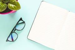 I vetri, una nota aperta con la pagina bianca, fiore verde su un fondo blu pastello Copi lo spazio immagini stock
