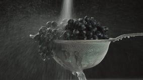I videoen ser vi druvor i en sikt, vatten som uppifrån faller i en stråle, går kameran från vertikalt och tillbaka lager videofilmer