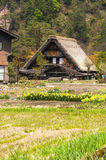 I villaggi storici di Shirakawago Immagine Stock