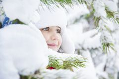 I vinter i en skog en liten fackvinter, i en skog, ett litet Royaltyfri Foto
