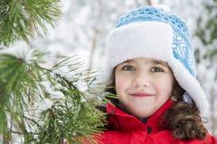 I vinter i en skog en liten fackvinter, i en skog, ett litet Fotografering för Bildbyråer