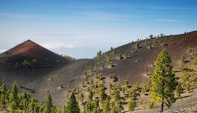 I vulcani dirigono nell'isola di Palma della La Fotografia Stock