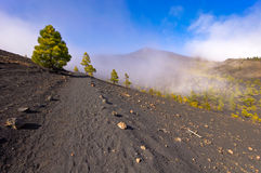I vulcani dirigono nell'isola di Palma della La, Spagna Immagini Stock Libere da Diritti