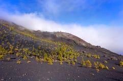 I vulcani dirigono nell'isola di Palma della La, Spagna Fotografia Stock Libera da Diritti