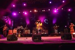 I Wailers di concerto Fotografia Stock Libera da Diritti