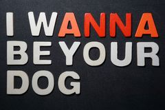 I wanna be your dog. I wanna be you dog word white orange red color letter text type graphic desing on black background pedro jose pelaez ferreiro pedryj royalty free stock photo
