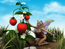 I wanna this one. Little flower fairy with butterfly wings Stock Photography