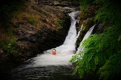 I in Waterfall. Waterfall, Carpathians, mountain river, whirlpool Royalty Free Stock Images