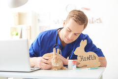 I will take care of your health. Cheerful young veterinarian is curing a rabbit. He is sitting and stroking the pet. The man is smiling. There are pills and Stock Photography