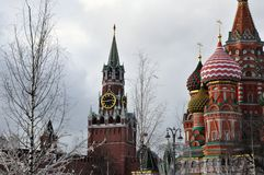 I Zaryadye parkera mot bakgrunden av St-basilikas domkyrka och det Spasskaya tornet av Kreml royaltyfri foto