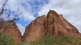 I Zion National Park i Utah Förenta staterna royaltyfri fotografi