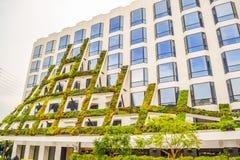 IAC Przynosi Kalifornia rodzimych rośliien grację scuptural fasada 8800 zmierzchu Zachodni bulwar w Zachodnim Hollywood fotografia stock