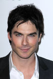 Ian Somerhalder Stock Photos