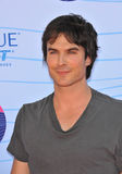 Ian Somerhalder Stock Photography