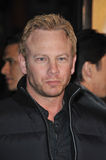 Ian Ziering Stock Photo