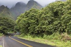 Iao谷毛伊的夏威夷国家公园 图库摄影