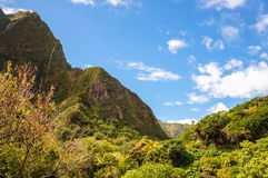 Iao谷,毛伊,夏威夷海岛,美国 免版税库存照片