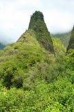 Iao针在谷毛伊的夏威夷国家公园 免版税库存照片