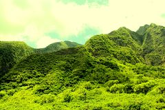 Iao dal, Maui Royaltyfria Foton