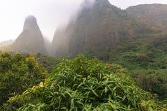 Iao-Tal-Nationalpark auf Maui Hawaii Stockbilder