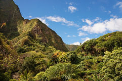 Iao Valley, Maui, Hawaiian island, USA Royalty Free Stock Photography