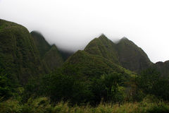 Free Iao Valley State Park Royalty Free Stock Photography - 24744987