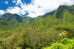 Iao Valley State Park on Maui Hawaii Stock Photos